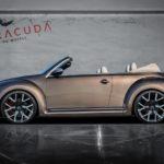 VW Beetle mit Tzunamee EVO